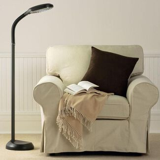 Original Natural Spectrum® Energy-Saving Floor Lamp